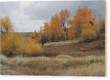 Fall In Montana Wood Print by Larry Stolle