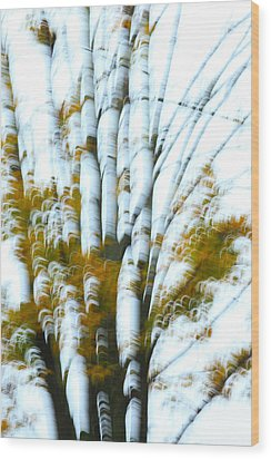 Fall In Motion Wood Print by Karol Livote