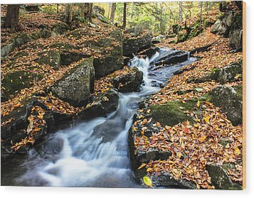 Fall In The Adirondacks Wood Print
