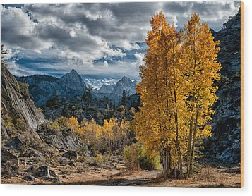 Fall In The Eastern Sierra Wood Print by Cat Connor