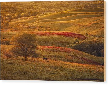 Fall In The Flint Hills Wood Print