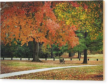 Fall In The Park Wood Print by Christina Rollo