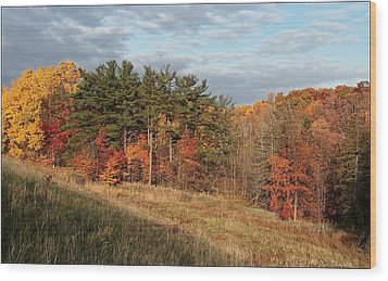Fall In The Valley Wood Print by Daniel Behm