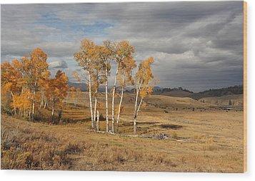 Fall In Yellowstone Wood Print by Daniel Behm