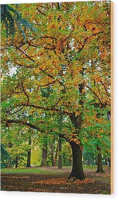 Fall Kissing The Leaves  Wood Print by Rae Berge