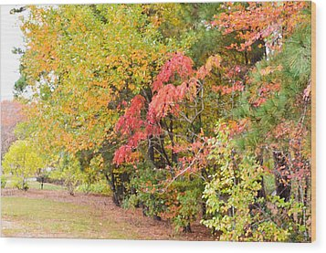 Fall Landscape 3 Wood Print by Lanjee Chee