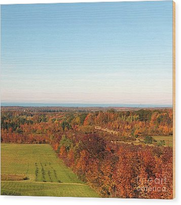 Fall Landscape Wood Print by Kathleen Struckle