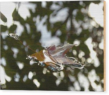 Fall Leaf In Stream Wood Print by Sheri Lauren Schmidt