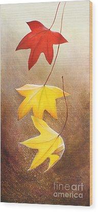 Fall Leaves 2 Wood Print by Teresa Wadman