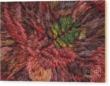 Fall Leaves  Wood Print by John Farnan