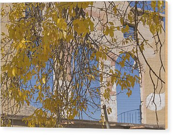 Fall Leaves On Open Windows Jerome Wood Print by Scott Campbell