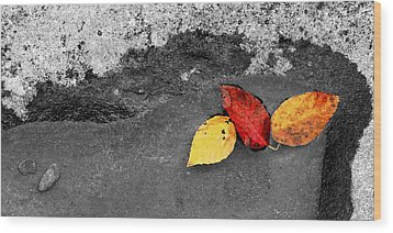 Fall Leaves Wood Print by Wendell Thompson