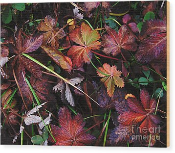 Wood Print featuring the photograph Fall Mix by Janice Westerberg