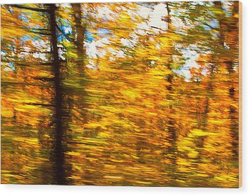 Fall Motion Wood Print