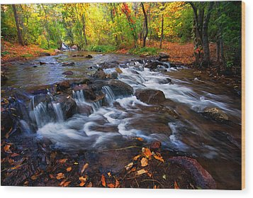 Wood Print featuring the photograph Fall On Fountain Creek by Ronda Kimbrow