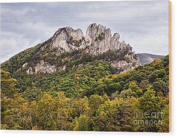 Fall On Seneca Rocks West Virginia Wood Print