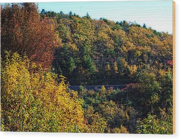Wood Print featuring the photograph Fall On The Blue Ridge Parkway by Cathy Shiflett