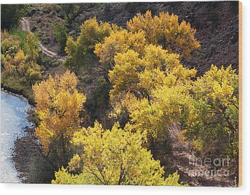 Wood Print featuring the photograph Fall On The Chama River by Roselynne Broussard