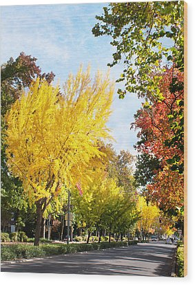 Fall On The Esplanade  Wood Print
