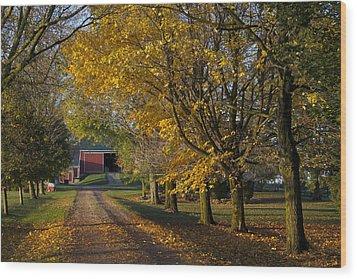 Fall On The Farm Wood Print by John-Paul Fillion