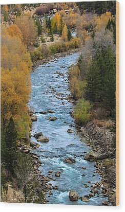 Fall On The Gros Ventre River Wood Print
