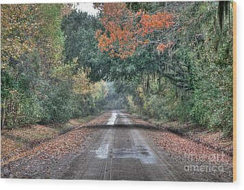 Fall On Witsell Rd. Wood Print by Scott Hansen