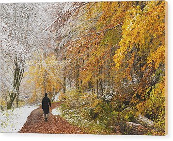 Fall Or Winter - Autumn Colors And Snow In The Forest Wood Print by Matthias Hauser