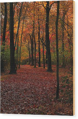 Fall Path Wood Print by Raymond Salani III