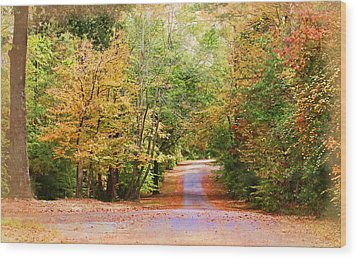 Wood Print featuring the photograph Fall Pathway by Judy Vincent