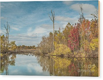Wood Print featuring the photograph Fall Pond by Debbie Green