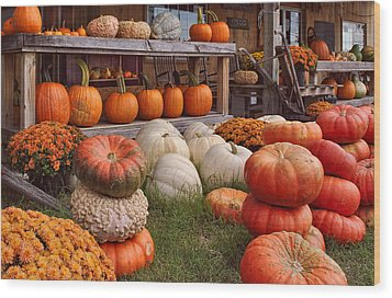 Fall Pumpkins And Gourds Wood Print
