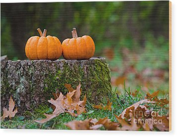 Fall Pumpkins Wood Print
