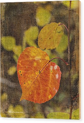 Fall Quaking Aspen Wood Print
