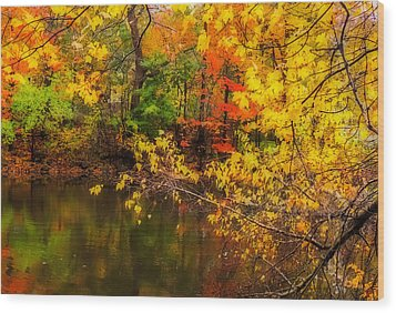 Fall Reflection Wood Print by Robert Mitchell