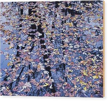 Fall Reflections Wood Print by Alan L Graham