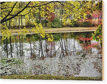 Fall Reflections Wood Print by Brian Wallace