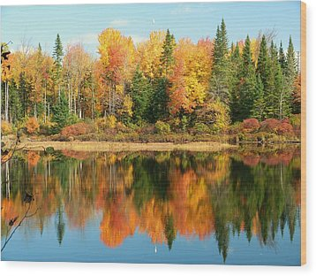 Fall Reflections Wood Print by Elaine Franklin