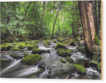 Fall River No. 2 - Berkshire County Wood Print