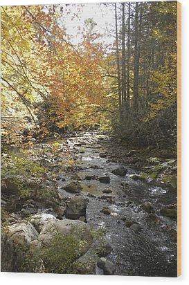 Fall River Scene Damascus Va Wood Print