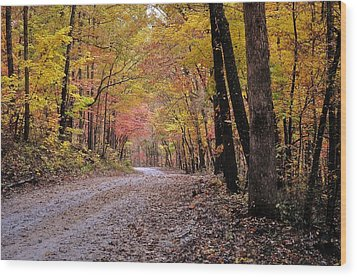 Fall Road Wood Print by Marty Koch