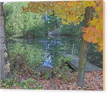 Fall Scene By Pond Wood Print by Brenda Brown