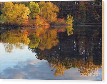 Fall Scene Wood Print by Olivier Le Queinec