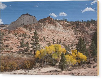 Wood Print featuring the photograph Fall Season At Zion National Park by John M Bailey