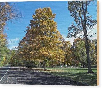 Fall Season Wood Print