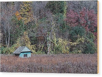Fall Shed #1 Wood Print by Glenn Cuddihy