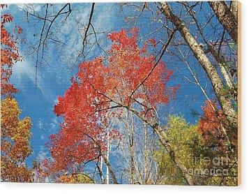 Fall Sky Wood Print