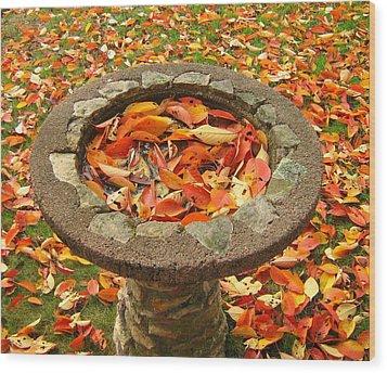 Wood Print featuring the photograph Fall Splendor by Bruce Carpenter