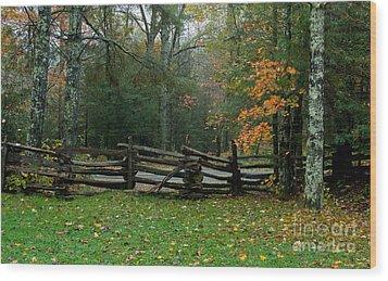 Fall Split Rail Fence Scenic Wood Print