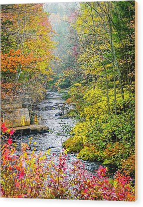 Fall Stream In New Hampshire Wood Print
