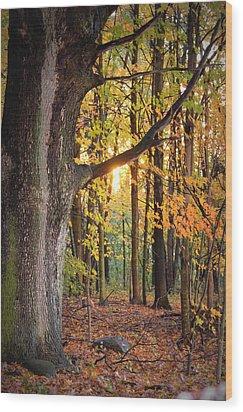 Fall Sunset Wood Print by Jennifer  King